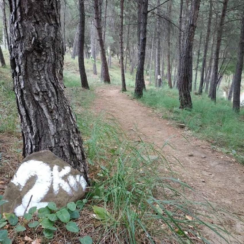 ΔΕΛΤΙΟ ΤΥΠΟΥ - Ακύρωση 2ου Αγώνα City Trail Αγρινίου
