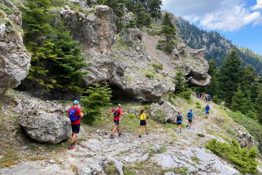 Ορεινό τρέξιμο για αρχάριους στο ελατόδασος της Πάρνηθας